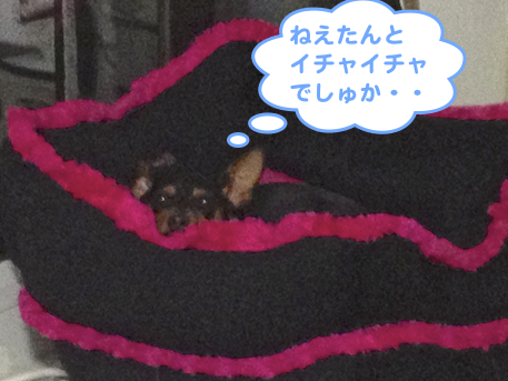 20130509-3.png