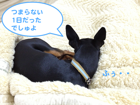20130512-4.png