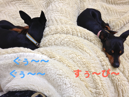 20130512-5.png