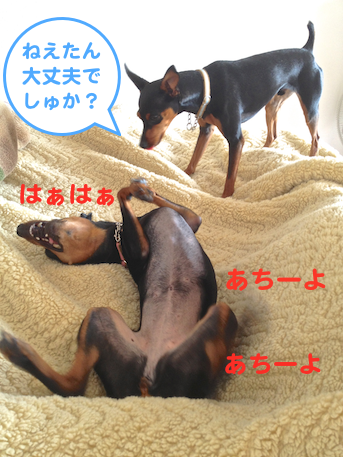 20130514-1.png