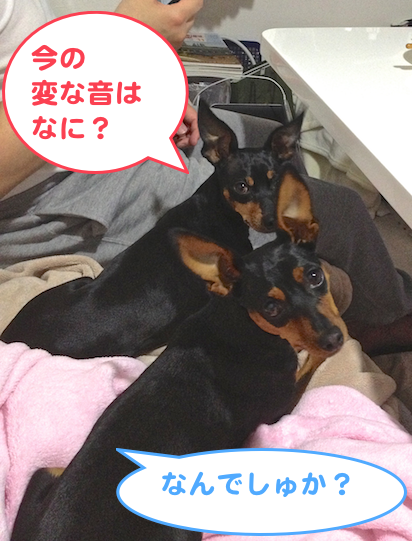 20130517-1.png