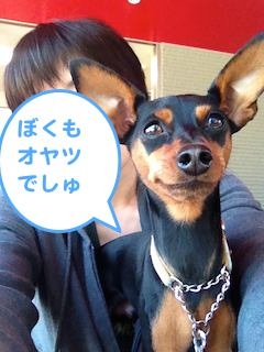 20130519-2.png