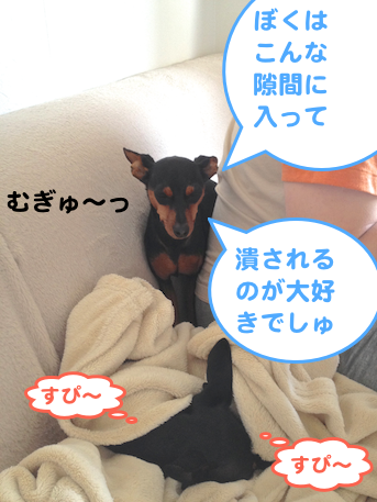 20130528-1.png