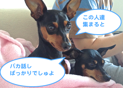 20130531-1.png