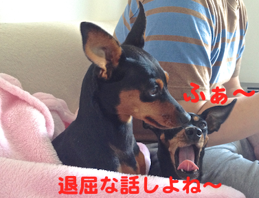 20130531-3.png