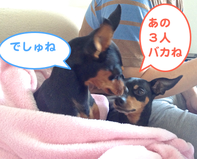 20130531-5.png