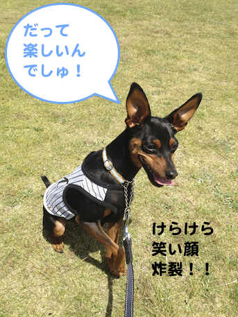 20130603-1.png