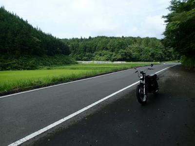 県道39号線にて