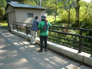 田倉川にかかる中橋