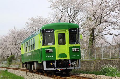 AR304桜