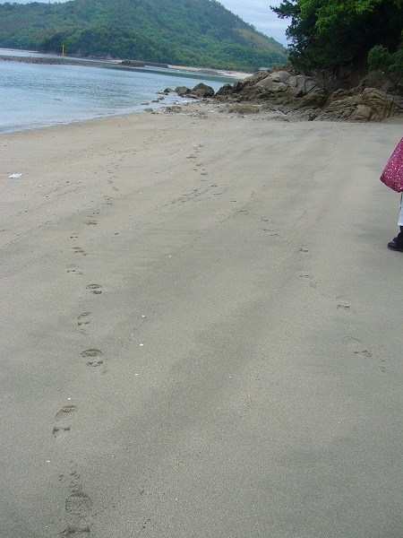 次は砂浜25.4.30