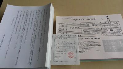 DCIM0906 (400x225)