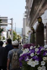 201300525花のまちフェア (156)