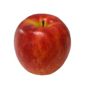 アップルパイ6