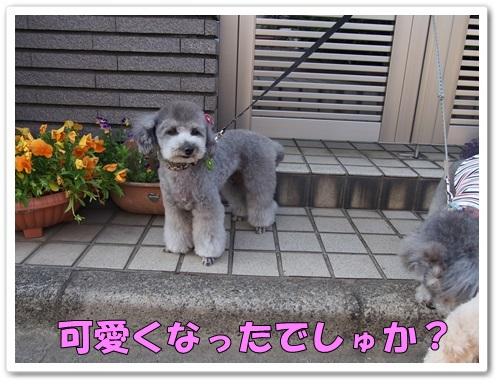 20130508_117.jpg