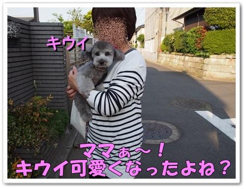 20130508_136.jpg