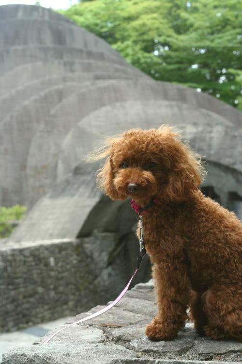 kauizawa
