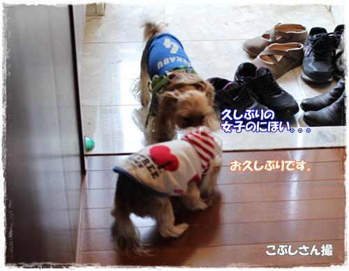 IMG_0583お