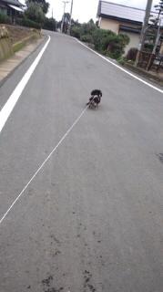 ララ母の犬バカ日記-110707_1006~010001.jpg