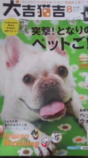 ララ母の犬バカ日記-110709_2158~010001.jpg