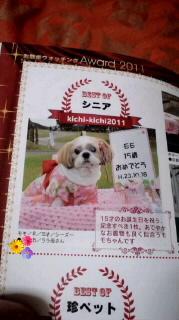 ララ母の犬バカ日記-120329_2111~0100010001.jpg