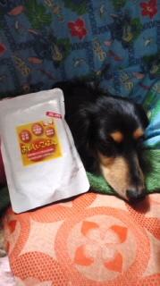 ララ母の犬バカ日記-120406_2017~010001.jpg