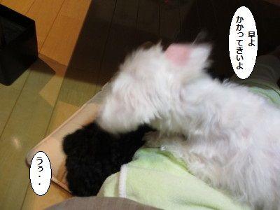 IMG_0068_1hayato20045ss0089s
