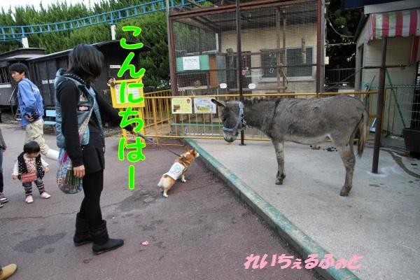 DPP_2442.jpg