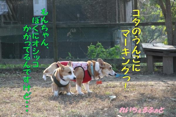 DPP_2560.jpg