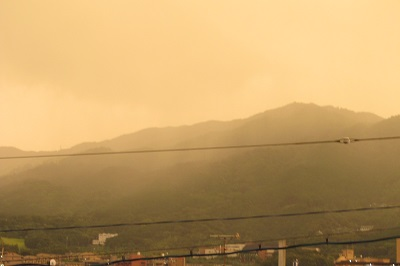 黄色い夕方。