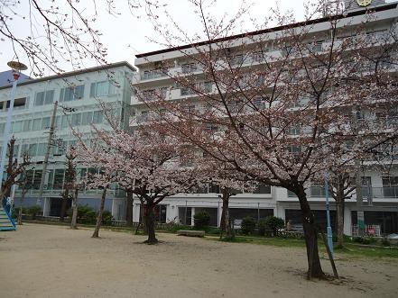DSC00460.jpg