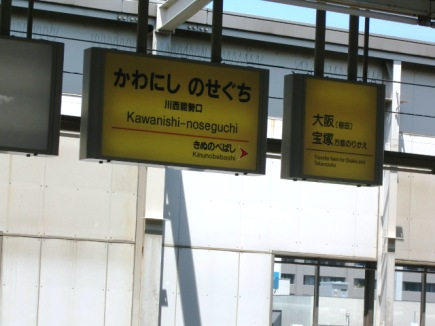 aozorasukima.jpg