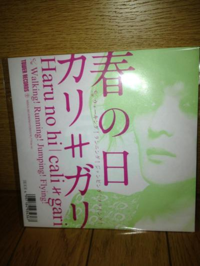 2013 05 26 春の日 7inch+CDR盤