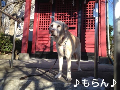 140106 寒い昼散歩-2