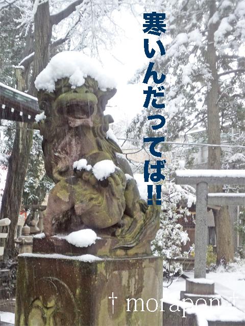 140214 雪散歩-6