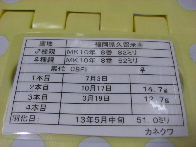 カネ847510