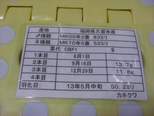 カネ852502