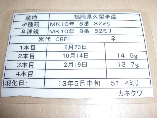 カネ847514