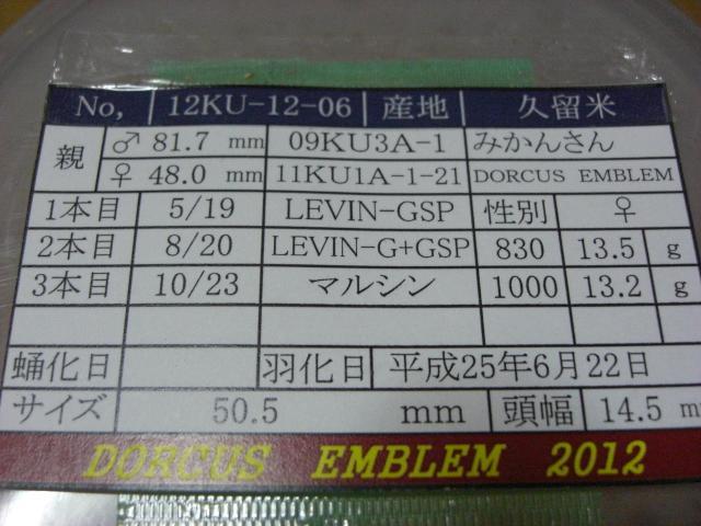 CIMG3445.jpg