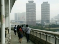 rain08.jpg