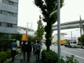 rain15.jpg