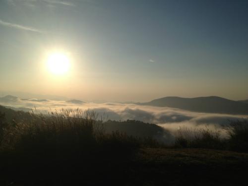 遠く江の島を見下ろすパノラマ景観