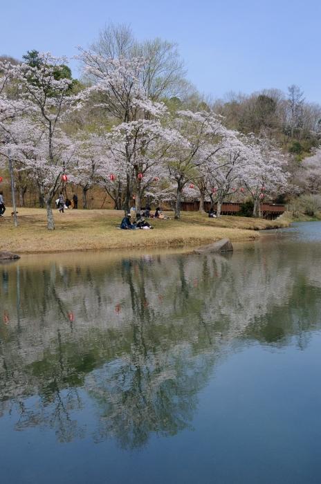 萩尾公園 (12)