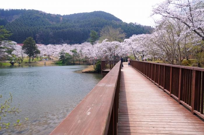 萩尾公園 (7)
