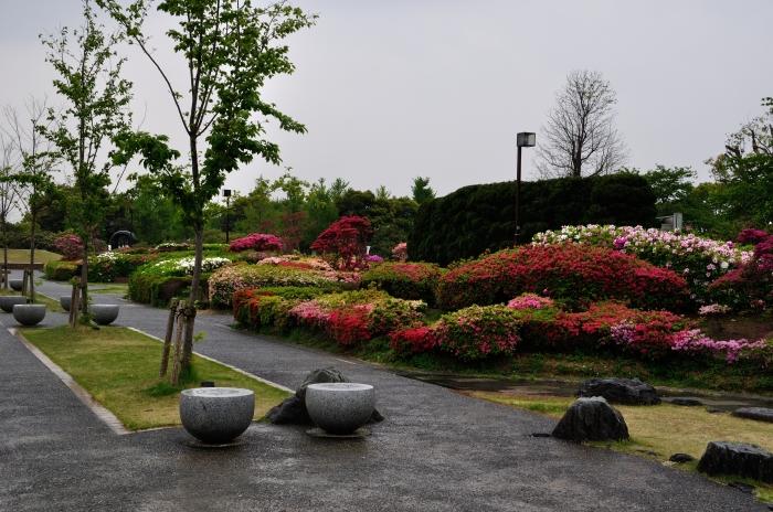 久留米百年公園 (11)