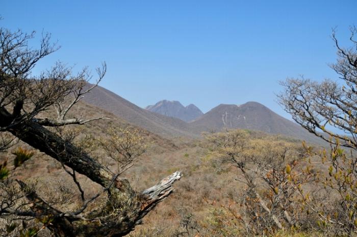 黒岳 (17)