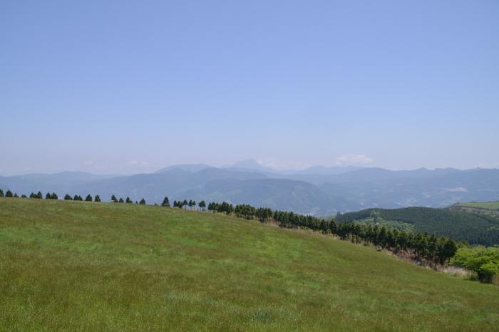 万年山 (4)