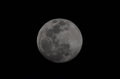 月DSC_9782mini