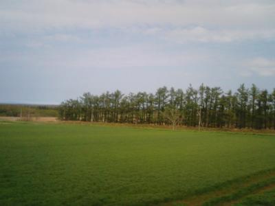 MA330215.jpg