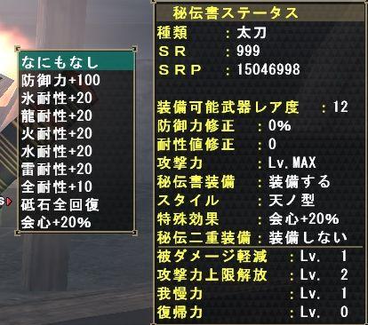 SR999.jpg